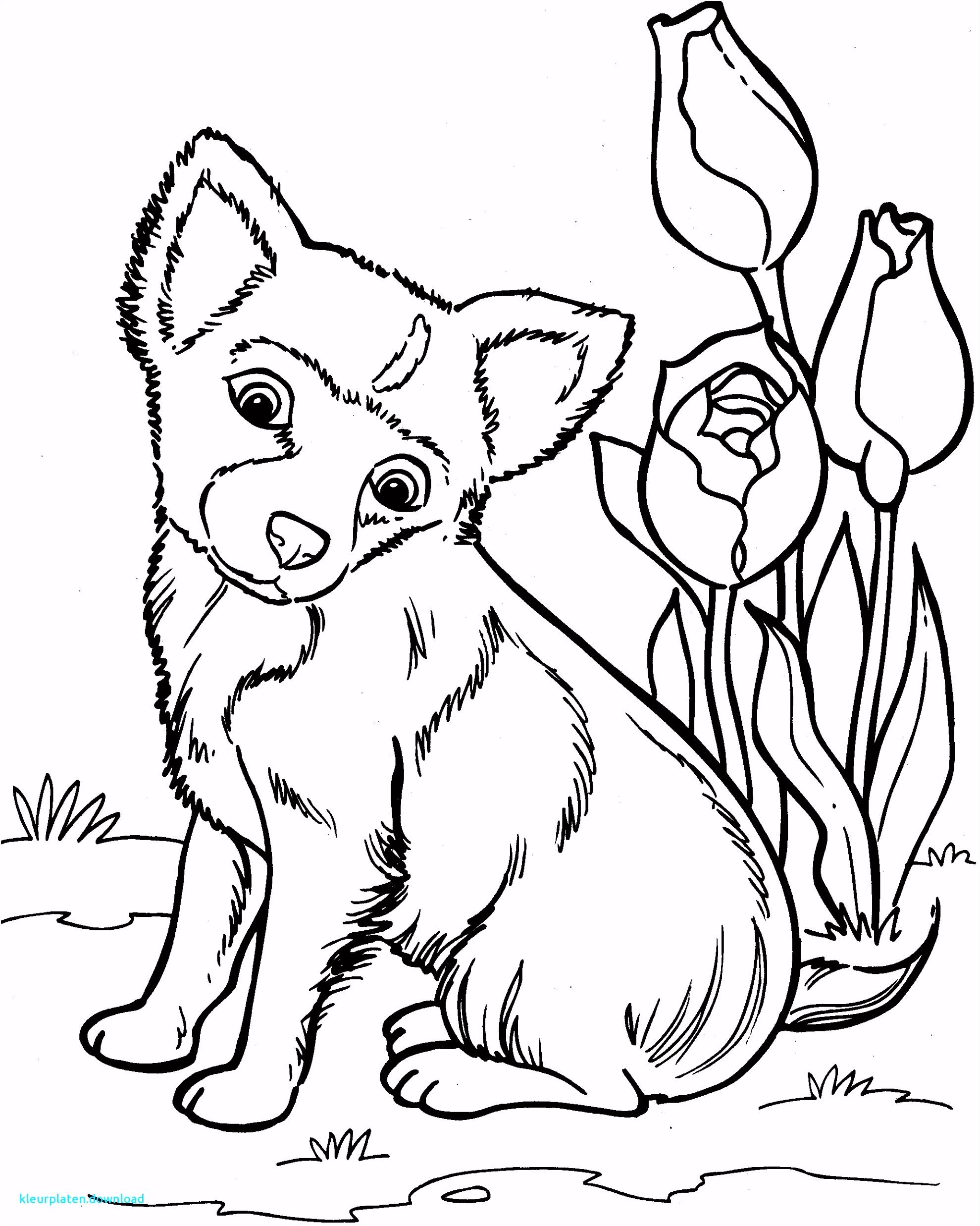 Best Dieren Kleurplaten Hond Kleurplaten