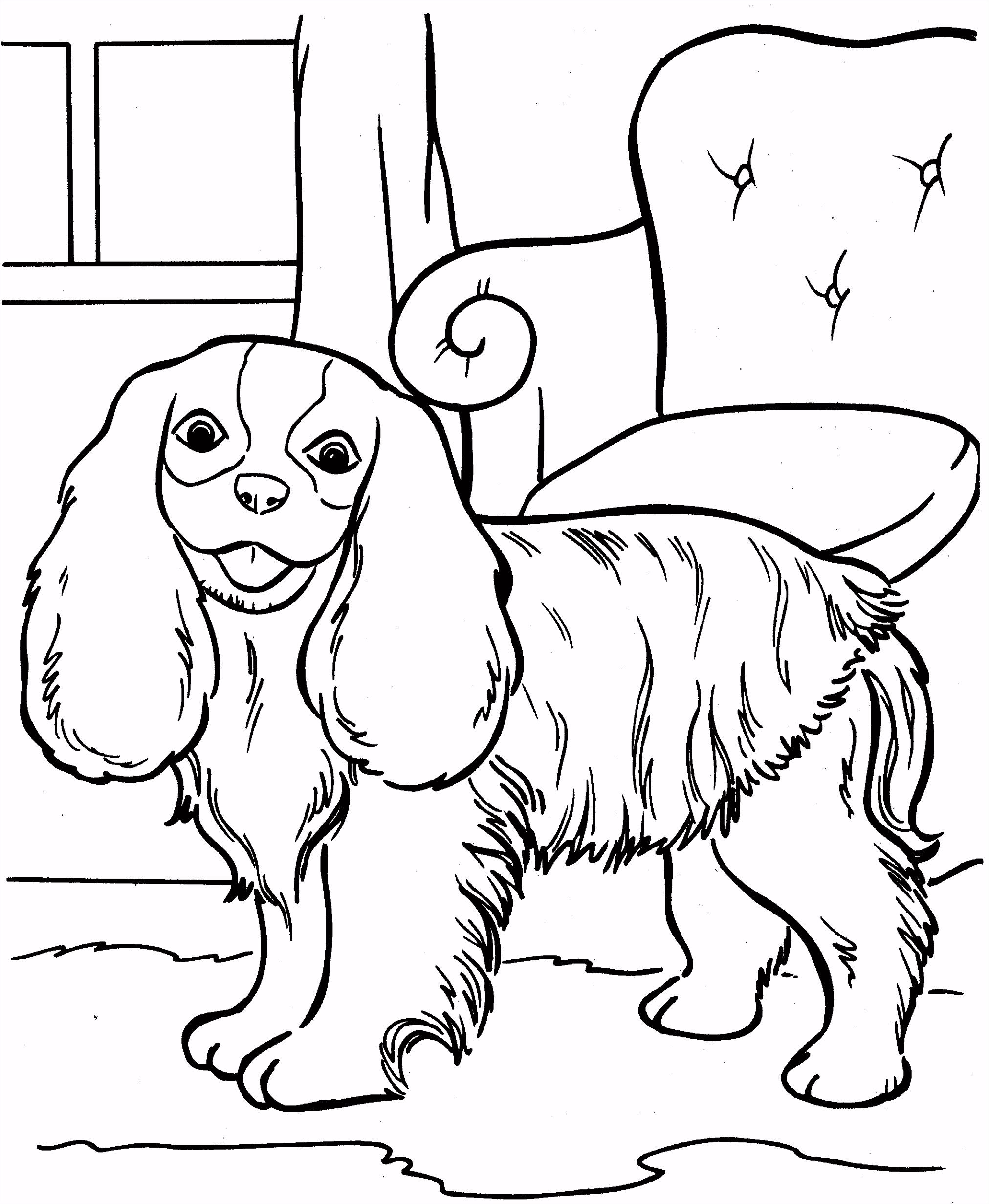 Inspirerende Kleurplaten Over Honden