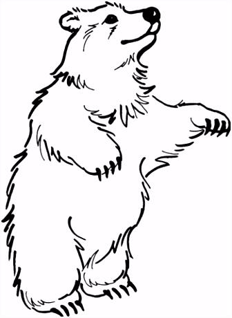 Bruine beer staat rechtop kleurplaat