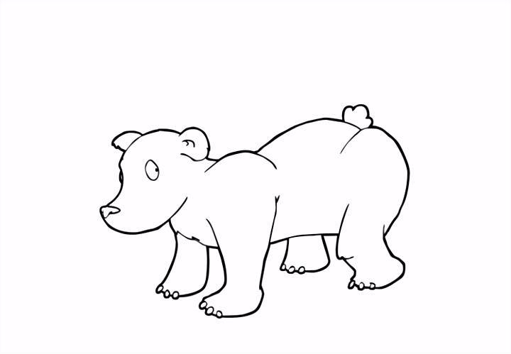 Kleurplaat beer Afb