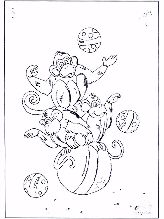 Apen op ballen Kleurplaten rentuin