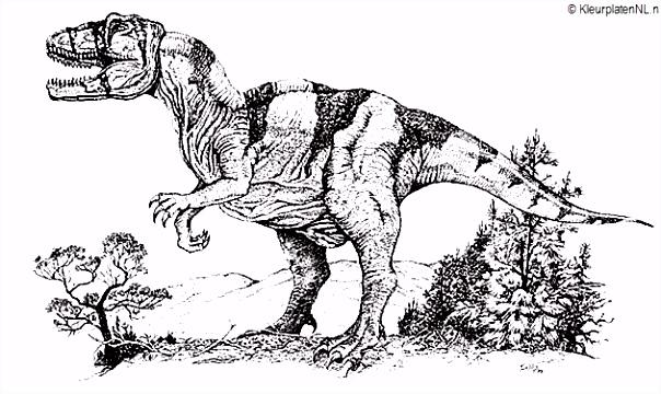 Dinosaurus kleurplaat kleurplaten 524 kleurplaat Kleuren