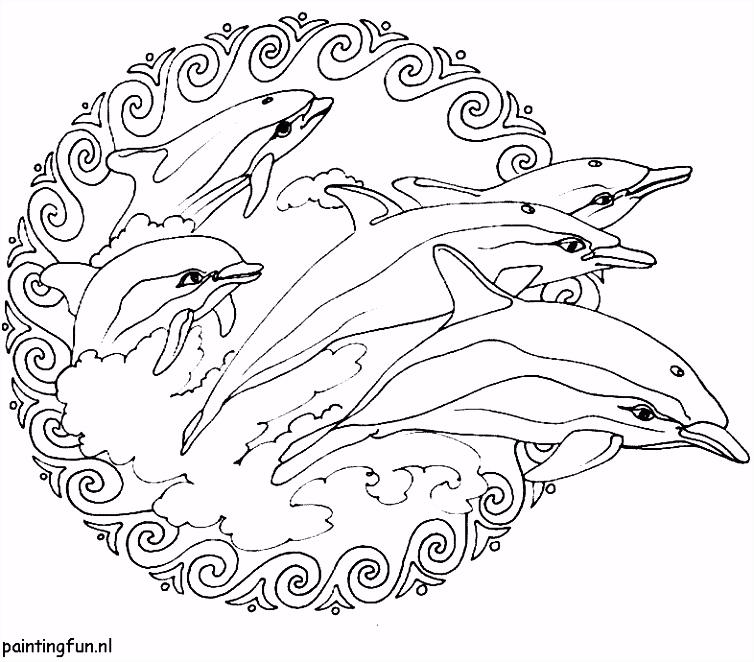 Kleurplaten Mandala Dolfijnen dolfijnenkunst
