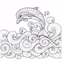 42 beste afbeeldingen van Tekeningen Sea shells Shells en Conchas