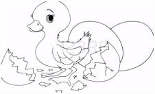 """146 beste afbeeldingen van sprookje """"Het lelijke eendje """" Bird"""