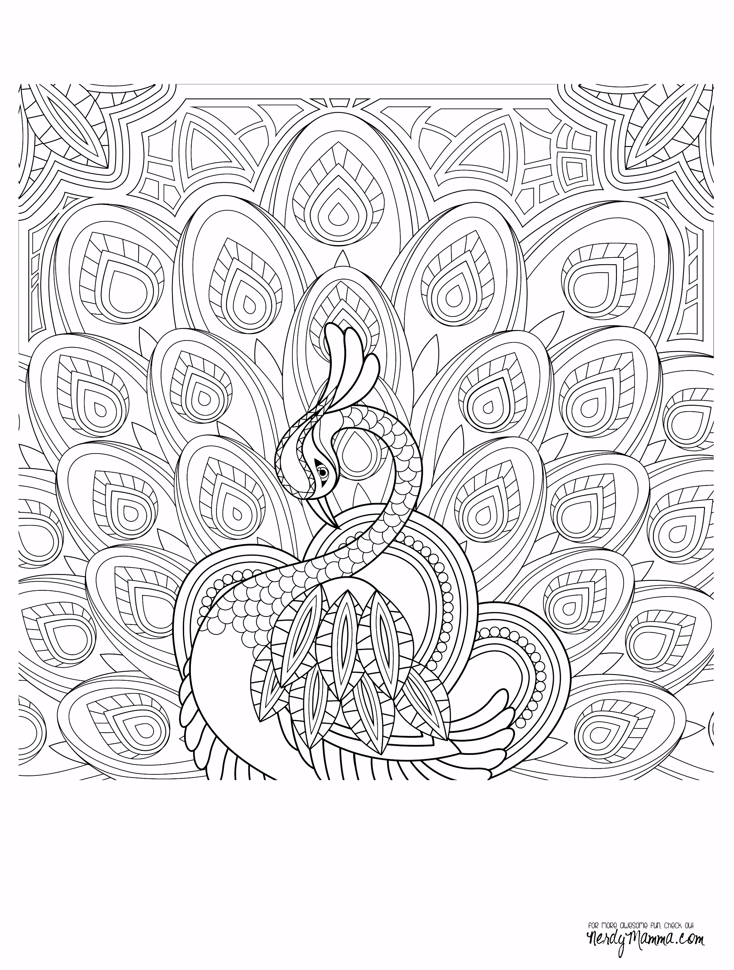 Peacock Feather Coloring pages colouring adult detailed advanced