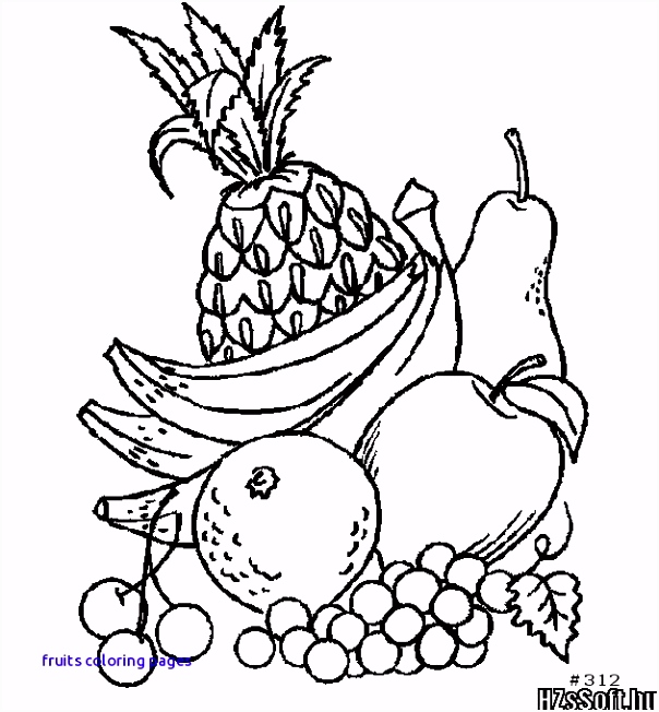 157 Best Gyümölcsök Fruits Pinterest Fruits Coloring Pages