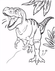 35 best dinosaur images on Pinterest