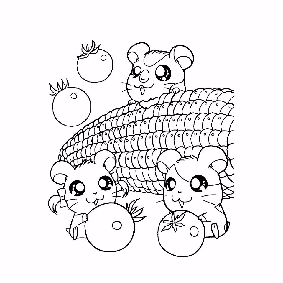 Kleurplaten Hamster Leuk Voor Kids Y8ya41mrn4 Esmk2mshw4