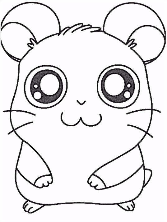 Printable Hamtaro The Hamster Coloring Pages