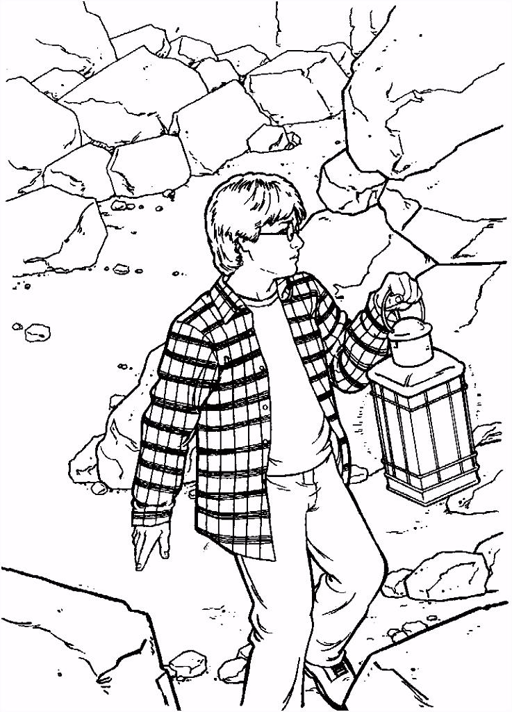 De Geheime Kamer Harry Potter En De Geheime Kamer Luisterboek