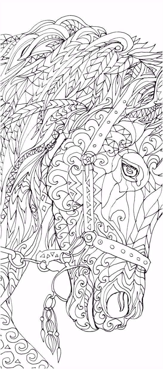 Picture Frame Coloring Page 78 Best Coloring Hello Kitty