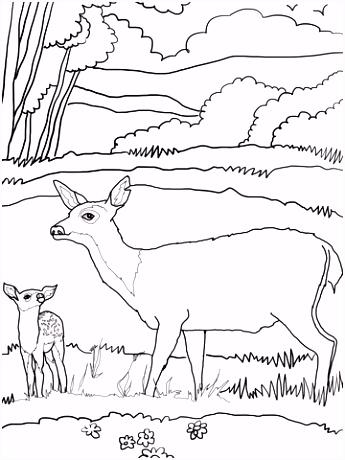 Baby hert met moeder kleurplaat