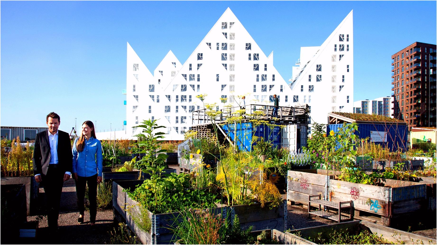 Innovation and design in Denmark