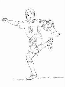 392 beste afbeeldingen van Thema sport voor kleuters