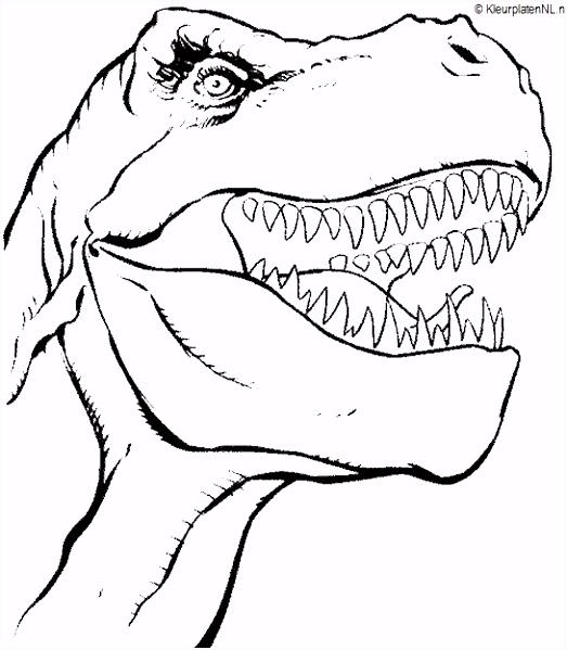 Dinosaurus kleurplaat kleurplaten 541 KLEUREN BRUCE