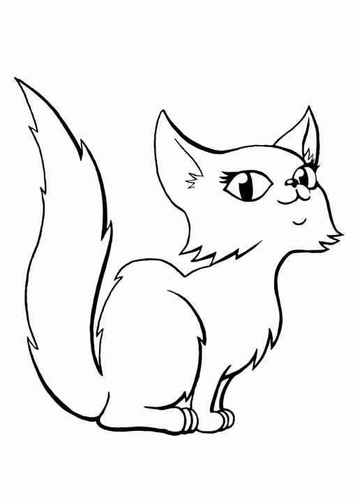 Kleurplaat kat Afb
