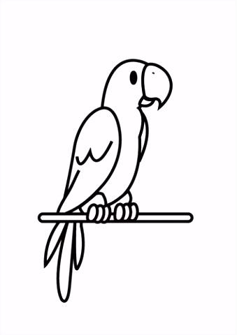 Kleurplaat papegaai ren Pinterest