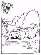 Kleurplaat Krokodil in de rentuin Kleurplaten