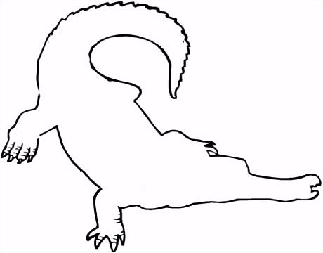 Krokodil schets kleurplaat
