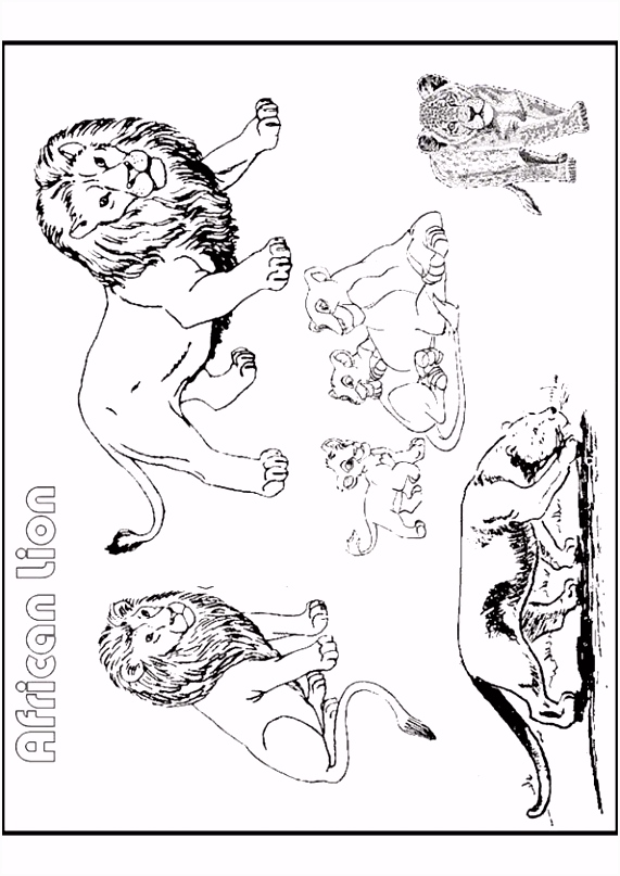 Kleurplaten Leeuwen Kleurplaat Leeuwen 7387 S1ox85sxf2 O5oz5scfbh