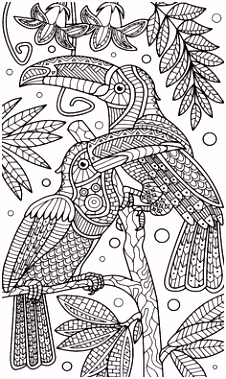 Kleurplaten Mandala Dieren 246 Beste Afbeeldingen Van Coloring Parrot In 2018 Coloring Pages A4qc16zdq5 Umhvs6t5e5