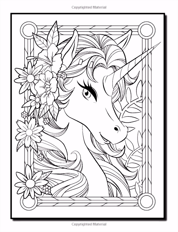 Amazon Unicorn Coloring Book An Adult Coloring Book with Fun