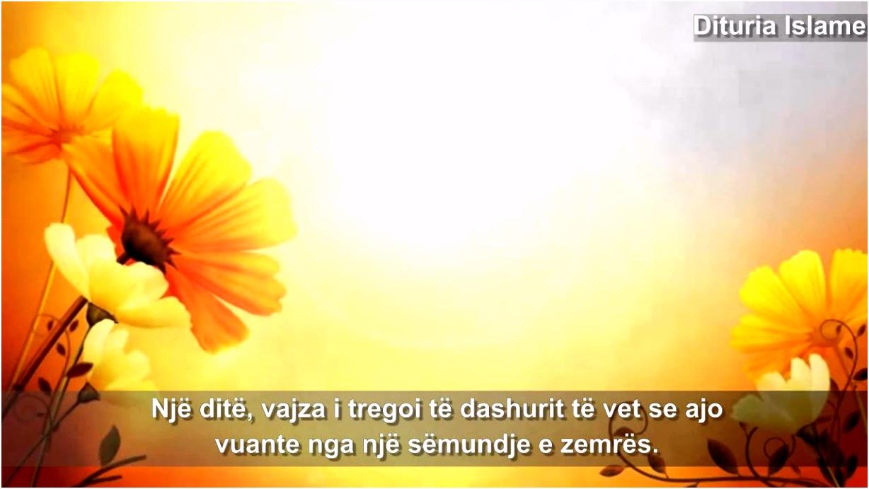 Foto me poezi dashurie 2012
