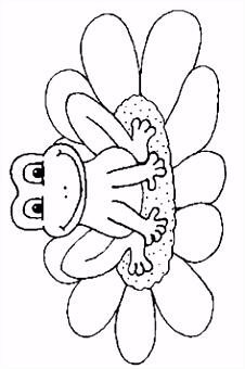 1075 best Frogs Ribbit Toads Turtles Snails images on Pinterest
