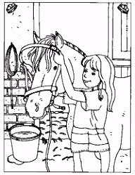 39 beste afbeeldingen van paardensport Horse crafts Bricolage en