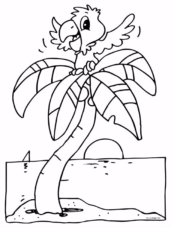 Kleurplaat Papegaai in een palmboom Kleurplaten