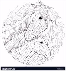 594 beste afbeeldingen van coloring horse zebra in 2018 Animal