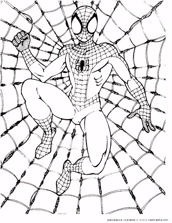 55 Mooi Spiderman Kleurplaat Afbeeldingen