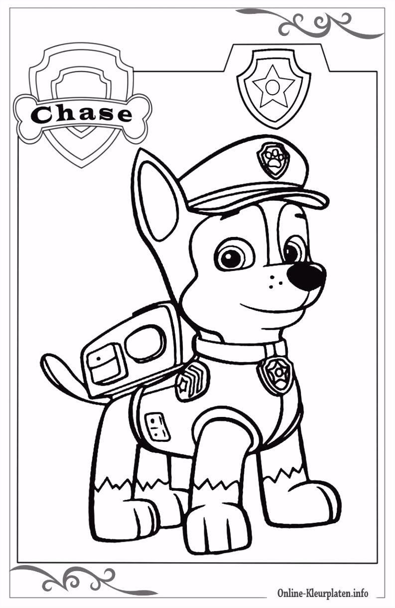 Paw Patrol printbare kleurplaten voor meisjes