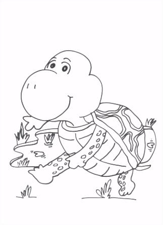Schildpadden Schildpad Kleurplaten