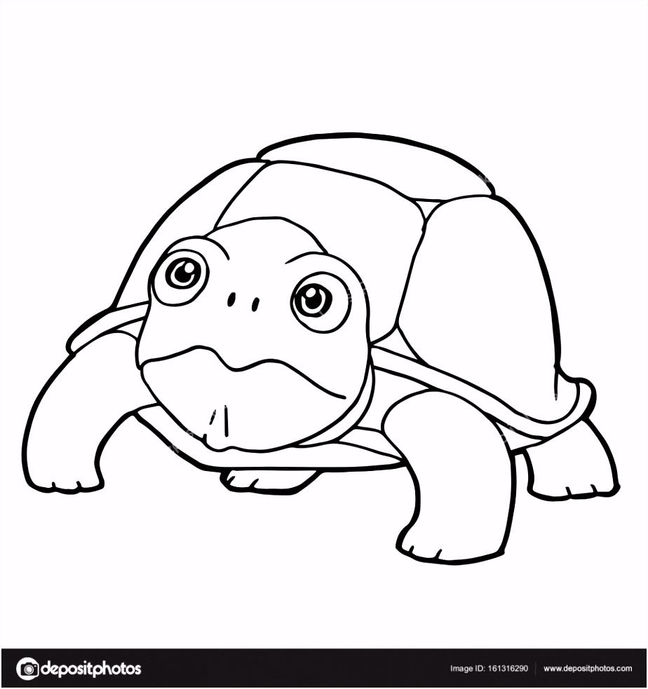 schattige schildpad tekenfilm kleurplaten pagina vector