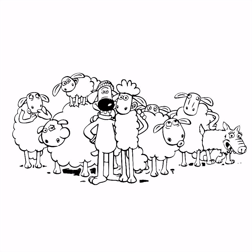 Leuk voor kids – Shaun Bitzer en de kudde