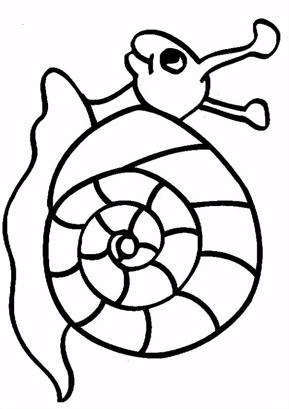 kleurplaten ren Slakken tekeningen kleurplaten ren …