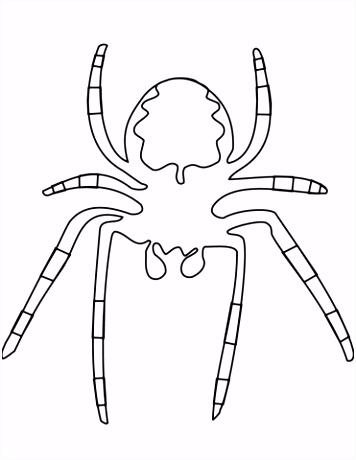 Spin maakt een web kleurplaat