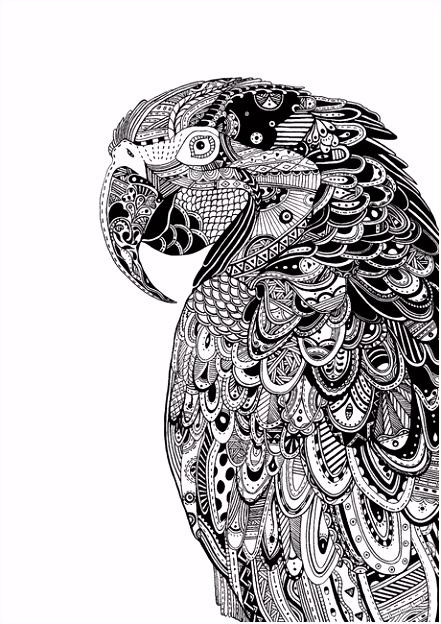 coloriage perroquet Mandala
