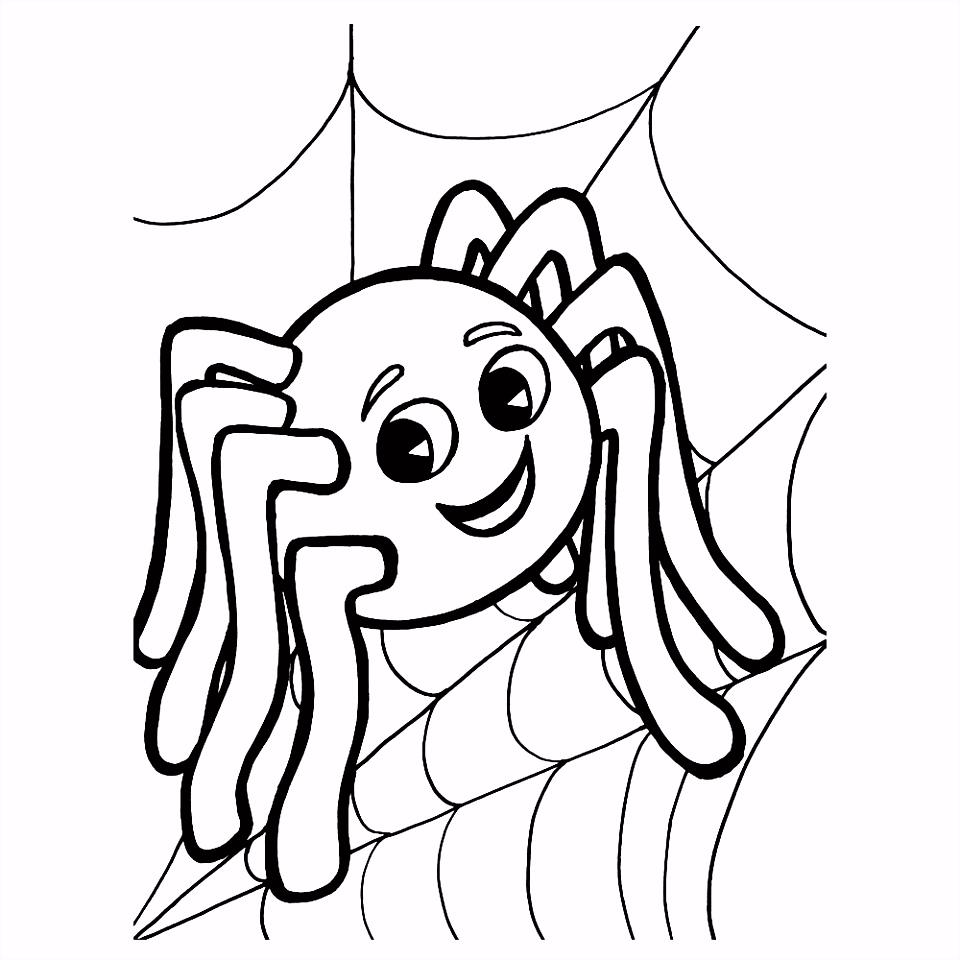Leuk voor kids – Een vrolijke spin