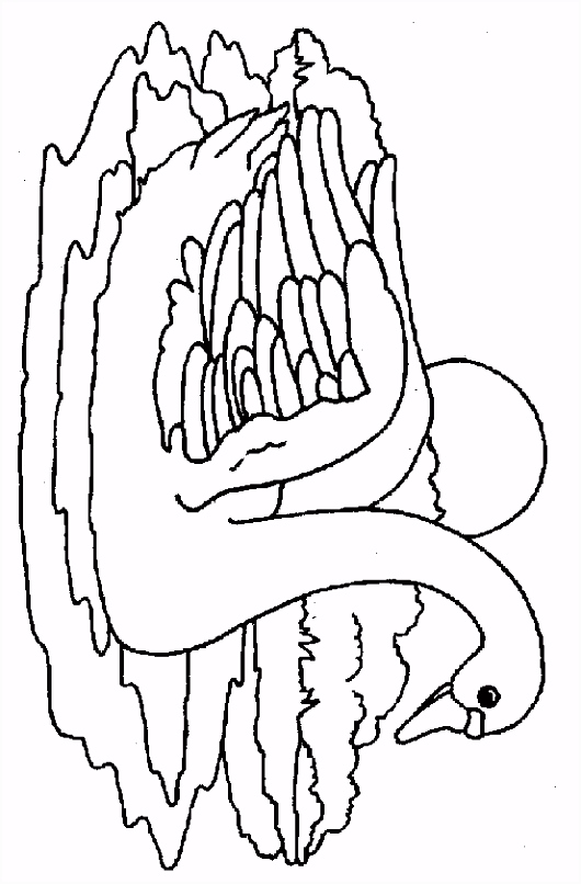 kleurplaat Zwanen Zwaan in zondsondergang