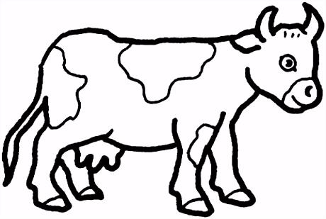 Gevlekte koe kleurplaat