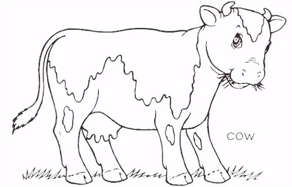 kleurplaten ren Koeien kleurplaat ren tekeningen