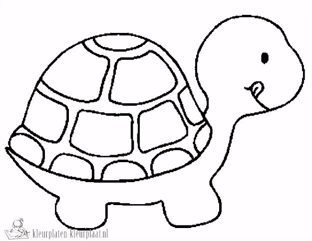 Schildpad Kleurplaten Beste Van Kleurplaten Schildpad – Werkbladen