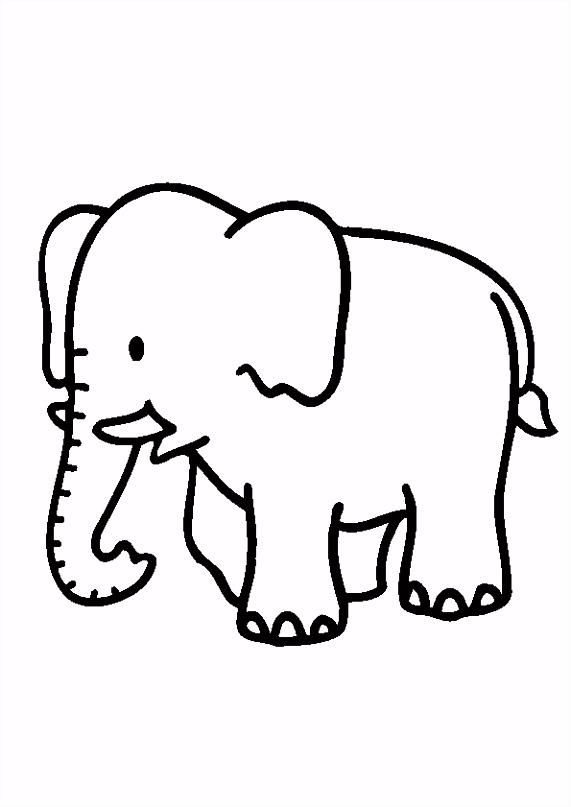 kleurplaat olifantje Google zoeken bb Pinterest