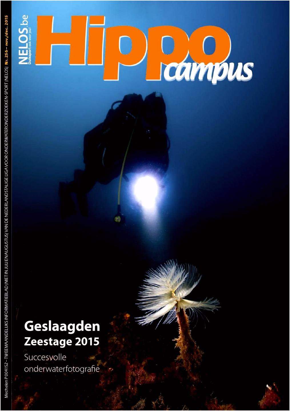 Hippocampus 255 nov dec 2015 by Ivo Madder issuu