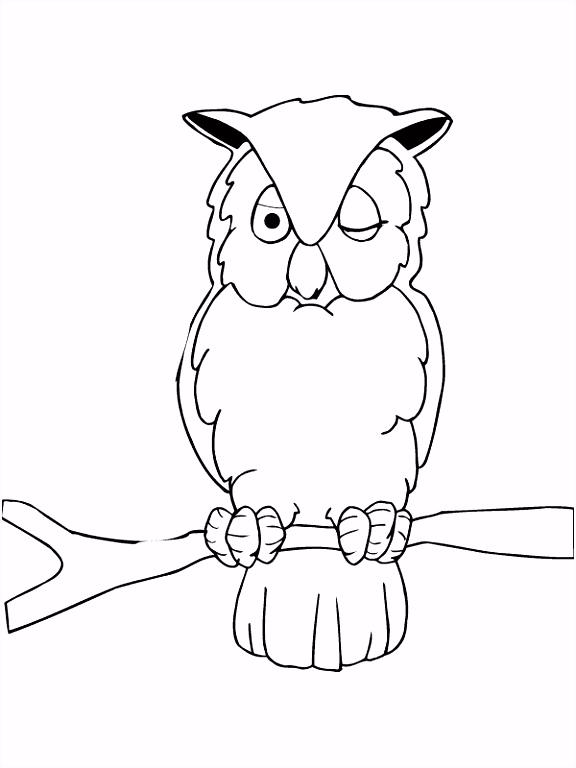 Owl Kleurplaten Kleurplaat Uil Zit In De Boom Kleurplaten M6rn83vlw2 G5bdsmudt2