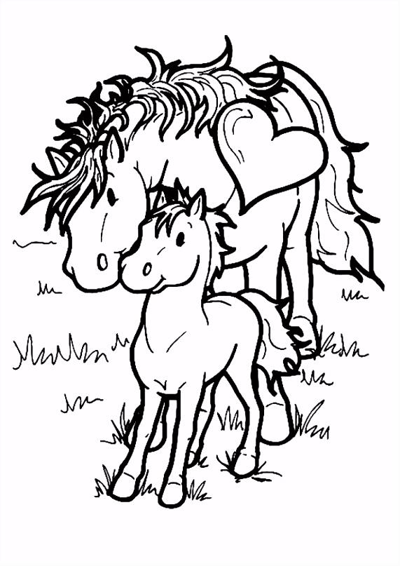 kleurplaat Paarden Paarden Inkleur Pinterest