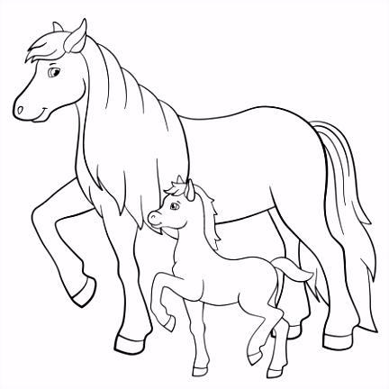 Kleurplaten paard veulen Stockvectors rechtenvrije Kleurplaten